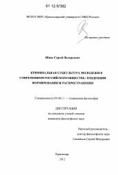 Криминальная субкультура молодежи в современном российском  Диссертация по философии на тему Криминальная субкультура молодежи в современном российском обществе